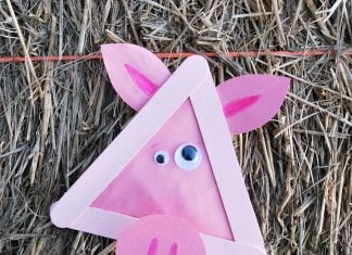 pig kids craft