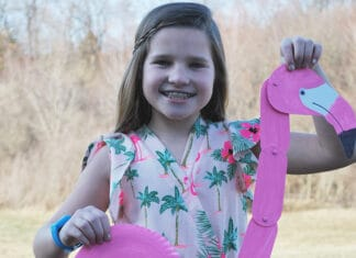 FLAMINGO PAPER PLATE CRAFT FOR KIDS