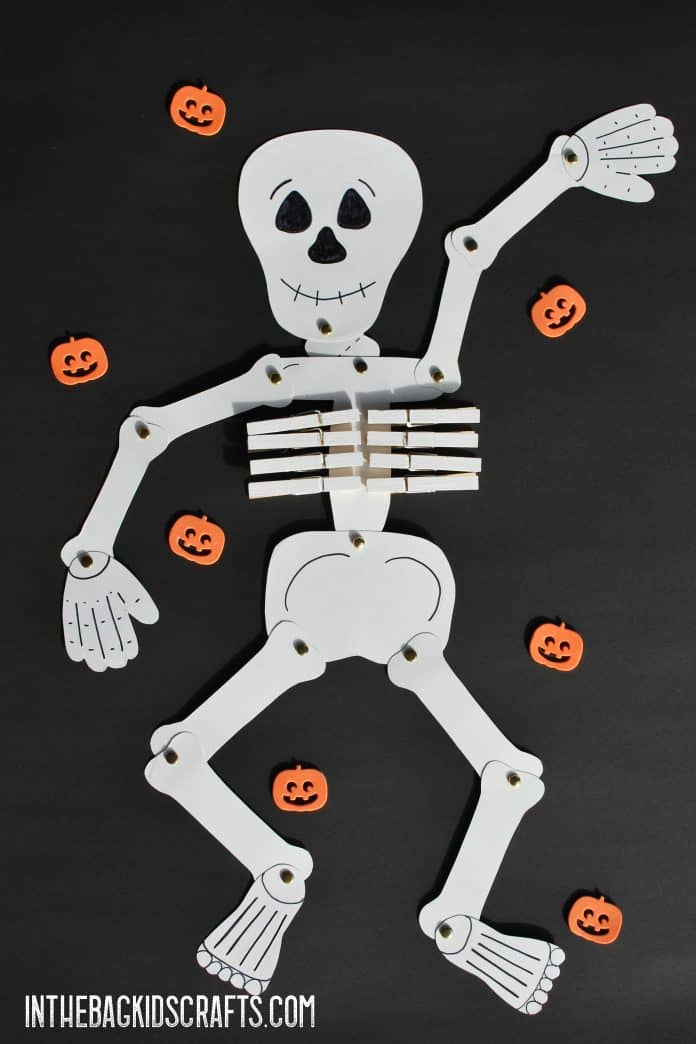 Moveable Paper Skeleton